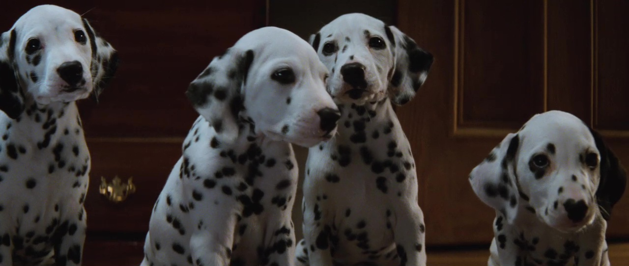 101 Dalmatians film still 3