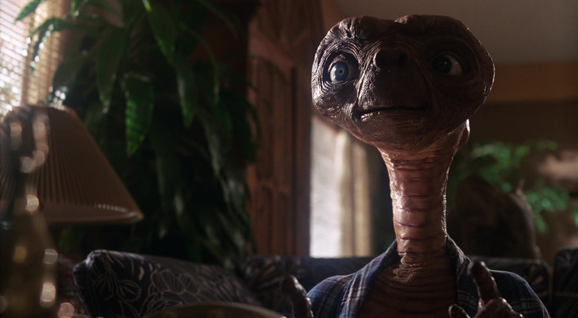 E.T. the Extra-Terrestrial film still 14